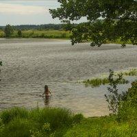 край озерный :: Дмитрий Анцыферов