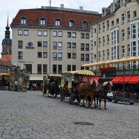 Лето в Дрездене :: Ольга
