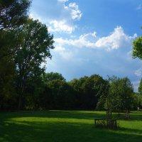Июль – «жарник» и «грозник» :: Galina Dzubina