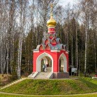 Из Москвы в Смоленск. Исток р. Москва. :: Владимир Лазарев