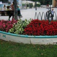 Цветы и шлюпка ) :: Людмила