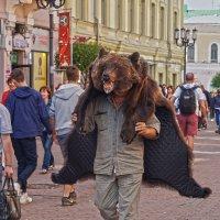 у каждого- свой медведь :: Светлана Мизик