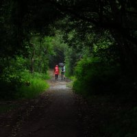 А я (на велосипеде) готов промокнуть под дождем :: Андрей Лукьянов
