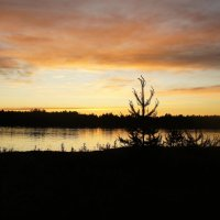 Беломорско-Балтийский канал. Закат :: Елена Павлова (Смолова)