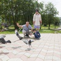 приручаем птиц :: Светлана Бурлина