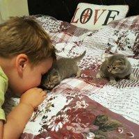 - Я люблю тебя, маленький... :: Тамара Бедай