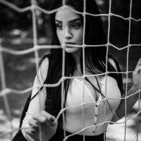 Лиза :: Андрей Фролов