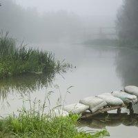Туманно на реке Псел :: Сергей Корнев