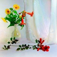 Красные и желтые цветы :: Наталия Лыкова