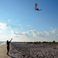 Вы любите запускать воздушного змея? :: Ольга Голубева