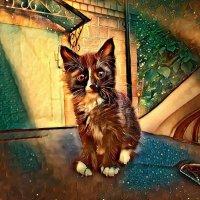 Котёнок Топи. :: Михаил Столяров