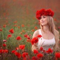 портрет :: Вера Кристеченко