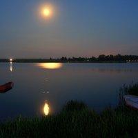 Желтоглазая ночь... :: Нэля Лысенко
