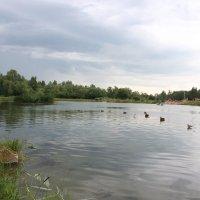 Пруд :: Вячеслав & Алёна Макаренины