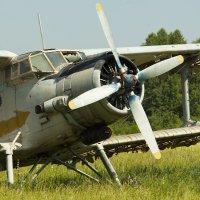 старый самолет :: Константин