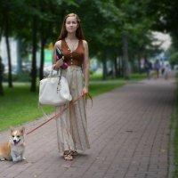 Дама с собачкой :: Наталия П