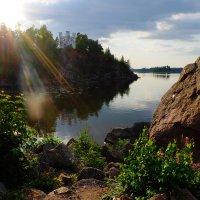 На берегу Финского залива :: Алексей Афанасьев