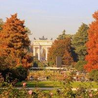 Осенний парк :: Olga