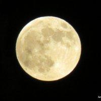 Луна. :: Валерьян Запорожченко