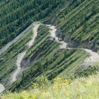 Дорога на перевале Кату-Ярык :: Валерий Михмель