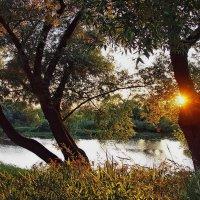 Итогом дня закатные лучи.... :: Лесо-Вед (Баранов)