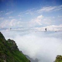 На прогулку с облаками :: Виолетта