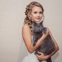 Кот невесты :: Ольга Кошевая