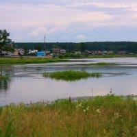 Бежит красавица-река... :: Нэля Лысенко