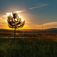 Искры пылающего заката :: Андрей Арафалов