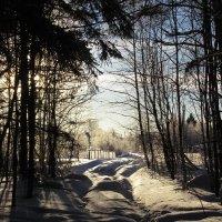 Еще зима... :: Крылова Светлана