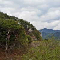 В Корее :: Светлана