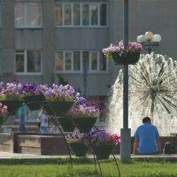 Цветочная арка, фонтан, лето, первые минуты знакомства... :: Михаил Полыгалов