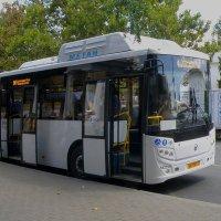 Новый автобус :: Александр Рыжов