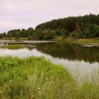 Летний вечер над тихой рекой... :: Нэля Лысенко