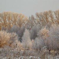 Зимний пейзаж :: Светлана Рябова-Шатунова