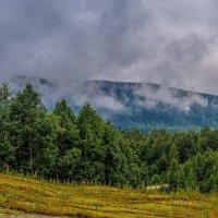 Туман. :: Евгений Голубев