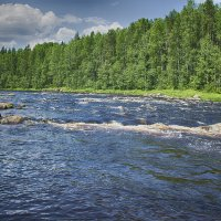 Рафтинг на реке Шуя-Карелия :: Юрий Яньков