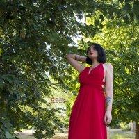 lady in red :: Lana Vakula