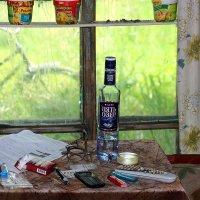 Один кадр из жизни пенсионера. :: Юрий. Шмаков