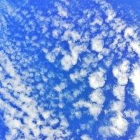 Небо :: Екатерина Ермилова