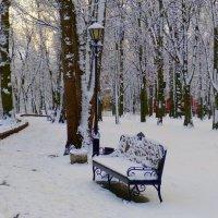 в зимнем парке :: Александр Прокудин