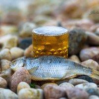 """""""Губит людей не пиво..."""" или """"Дары моря"""", или """"Кому пивка?"""" ;) :: Uliya"""