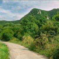гора Развалка в Железноводске :: Ольга (Кошкотень) Медведева