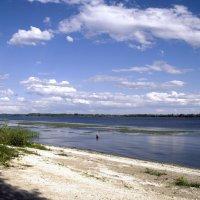 На берегах реки Волги. :: Анатолий