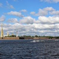 Взгляд с Дворцовой набережной :: Nina Karyuk