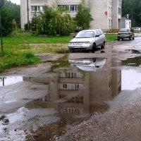 после дождя :: Владимир