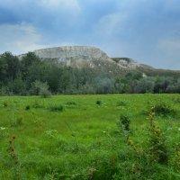 Природный парк ДОНСКОЙ.Гора Кабылья голова. :: Олег Рыбалко