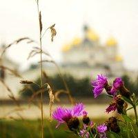 Троицкий Герасимо-Болдинский мужской монастырь :: Александр
