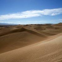 Пустыня Гоби :: Irina Shtukmaster