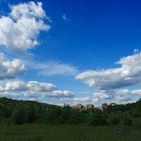 Долина реки Сходня в Куркино :: Ирина Via